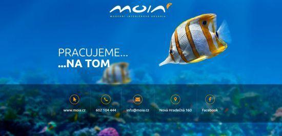 Spuštění webové stránky MOIA