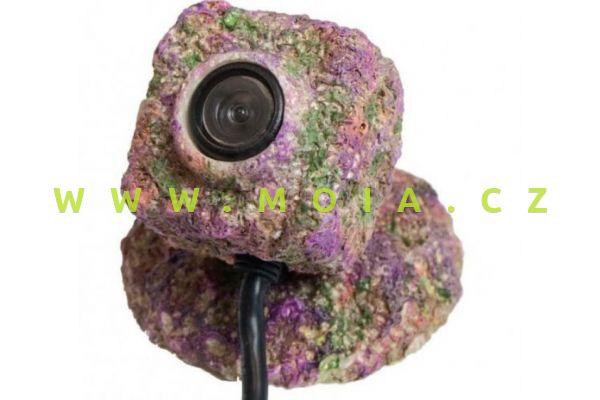 REEF-Camera  kryt Natureform Rock