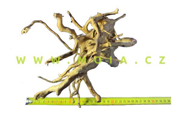 Estetická dekorace - Borneo Driftwood